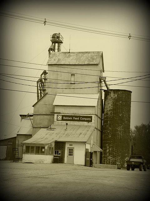 Baldwin Feed Company - Elevator in Baldwin City KS {where I raised my children}