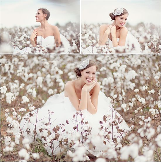 bridal in a cotton field