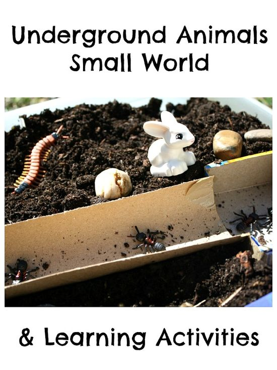 Underground Animals Small World and Learning Activities