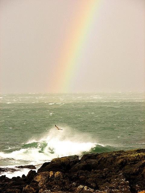 Portrush, Northern Ireland via Flickr