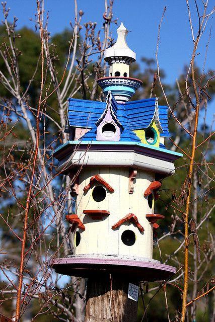 Bird house 4