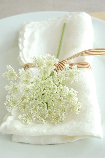 queen anne's lace with napkin