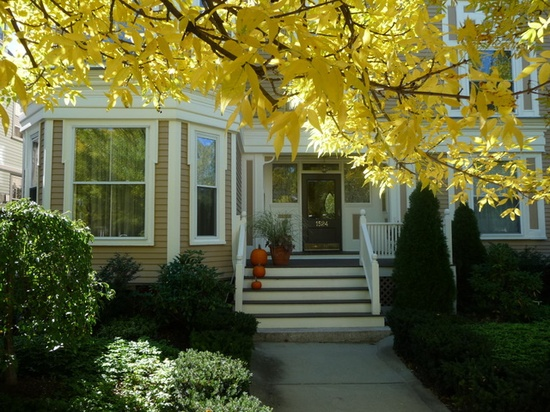 Fall is here - on Cambridge Street