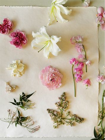 pick a flower by scent- bhldn by amy merrick