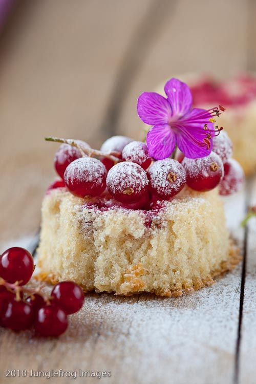 Currant cupcake