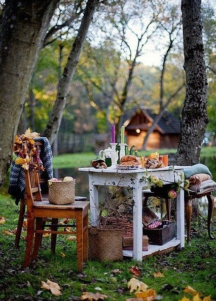 autumn picnic in the woods