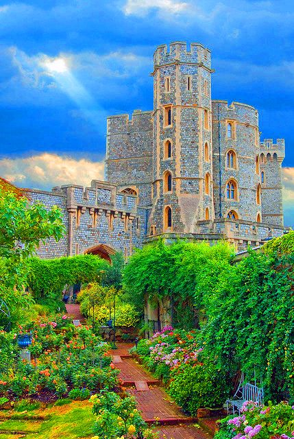 Windsor Castle rose garden, England
