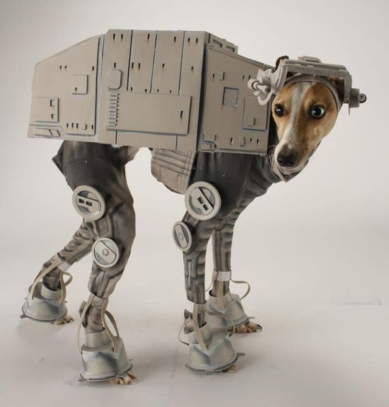 """Костюм от """"Междузвездни войни"""" за куче"""