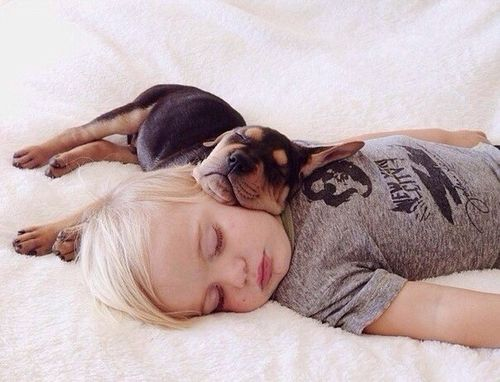Top Baby Names 2014 #dog #pet #boy