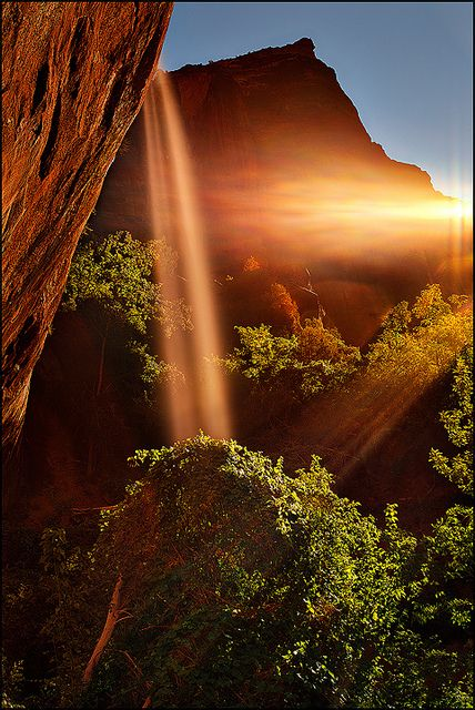 Radiance - Light Surrounded. Emerald Pools / Waterfall Zion National Park by Matt Anderson