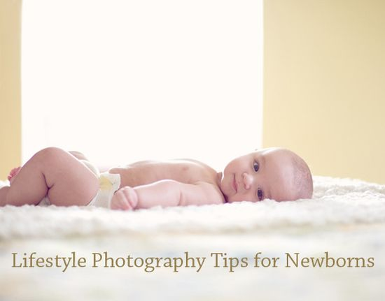 Newborn Lifestyle Photography Tips