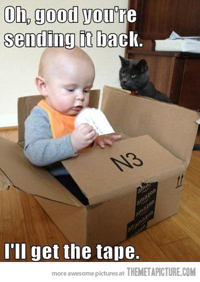Cats love babies.  Oh wait.