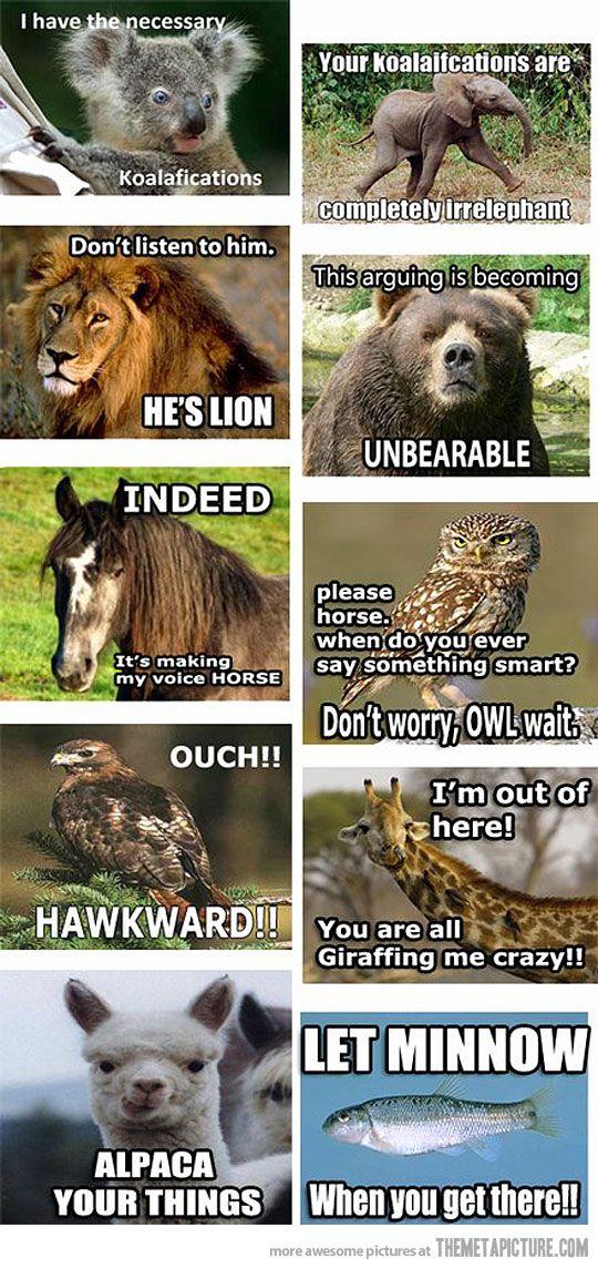 LOL animal humor!