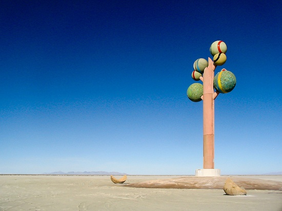 ~ The Tree of Utah ~  I-80 near the Bonneville Salt Flats....