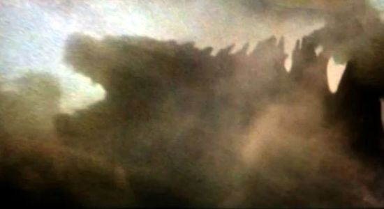 this is the real look on the godzilla, those concept art are fanmade