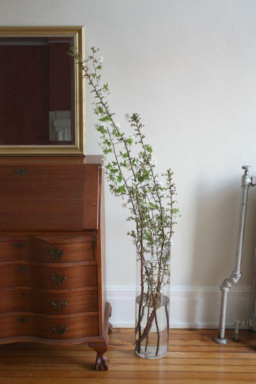 Branches: Easy Floral Arrangement.