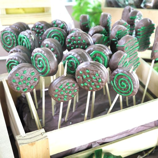 Decorated cookie pops at a Jungle birthday party!   See more party ideas at CatchMyParty.com!  #jungle #partyideas