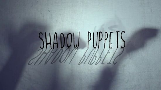 Bored kids? Rainy Day? Make Shadow Puppets!