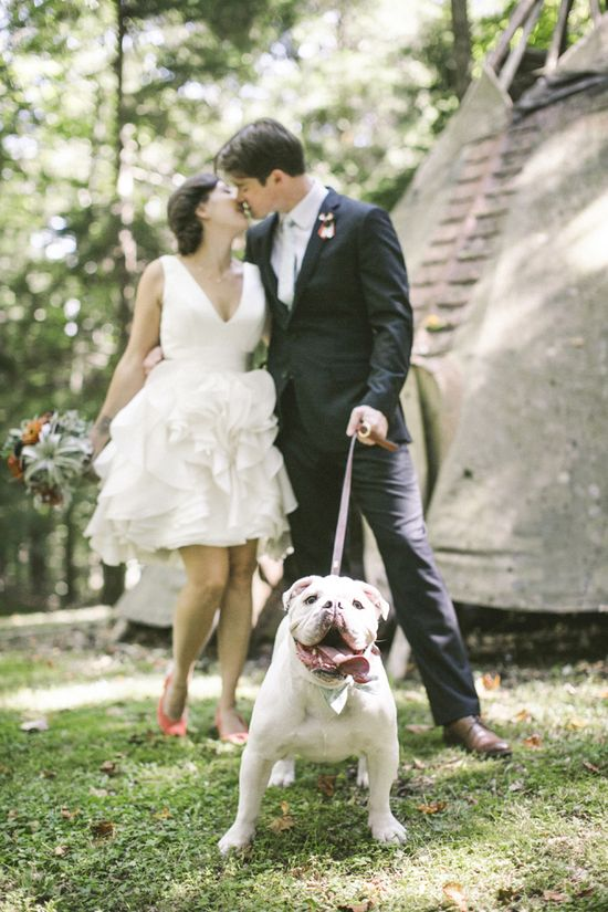 20 dogs who were in the wedding.