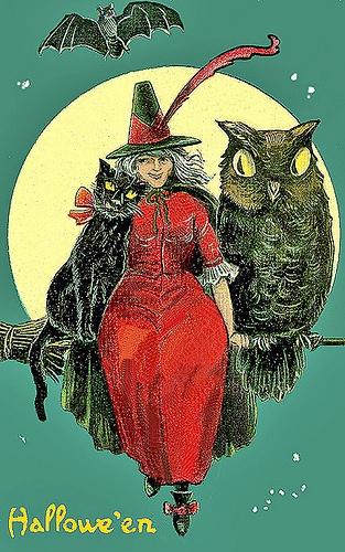 Halloween witch and owl