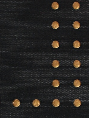 Gold on Black Glazed Abaca - Wallpaper