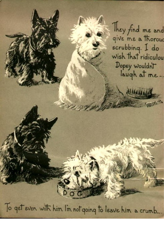 Westie and Scottie Dog Dopey and Gallant The Payback Terriers Mischief Children's Book Westhighland Scottish. $6.00, via Etsy.