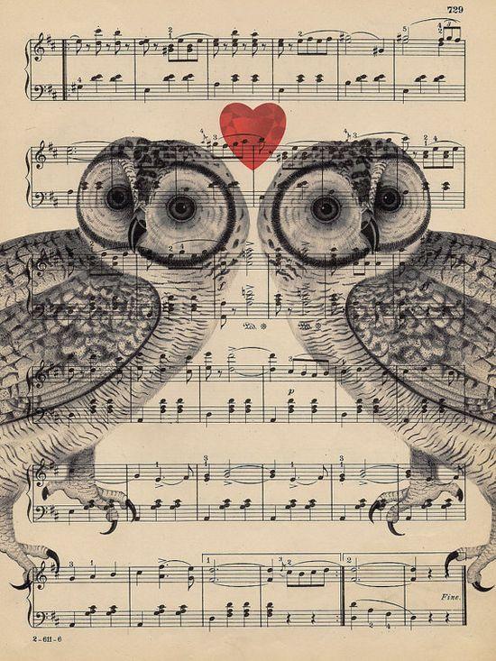 Owls love music
