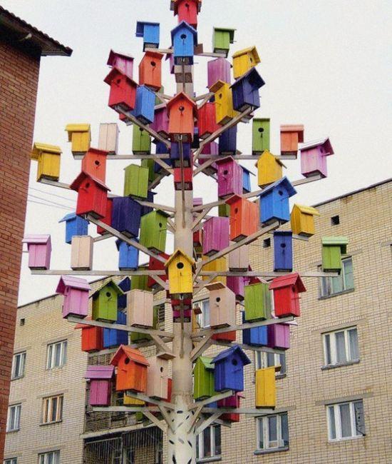 a birdhouse tree!