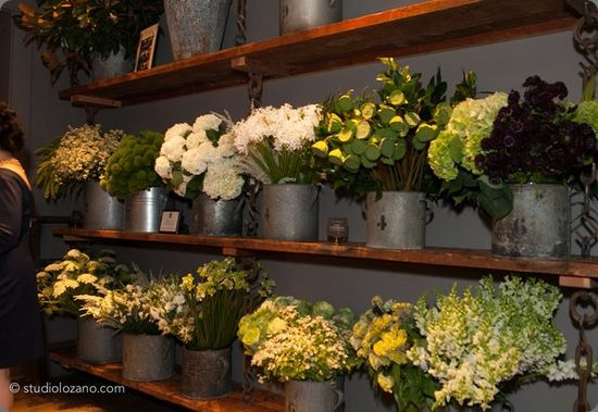 botanical brouhaha: Working Designer Wednesday