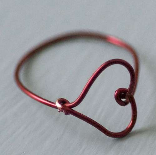 DIY ? wire ring.
