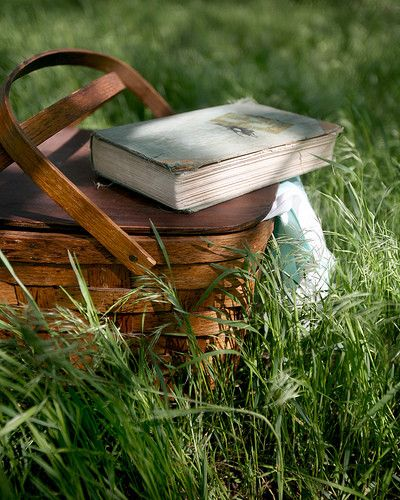 Picnic basket and book and then zzzzzzzz  lovely!