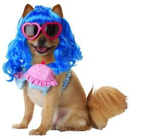 California Girl Pet Costume #Halloween #pet #katyperry