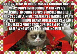 Love me some grumpy cat.