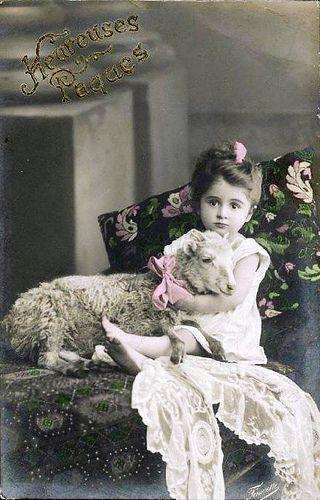Vintage Postcard - Little Girl w/Lamb