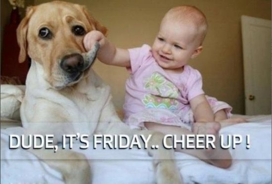 Cheer up its Friday quotes cute baby dog pets friday dayys of the week