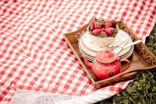 Picnic#summer picnic #picnic #prepare for picnic