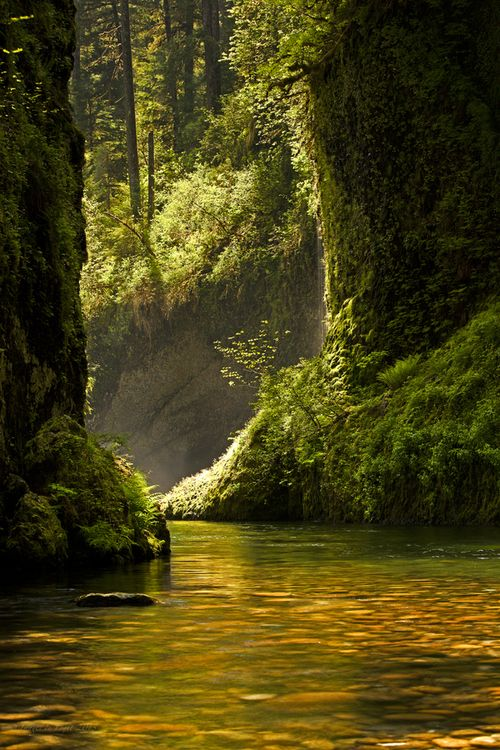 Eagle Creek, Columbia River Gorge National Park, Oregon