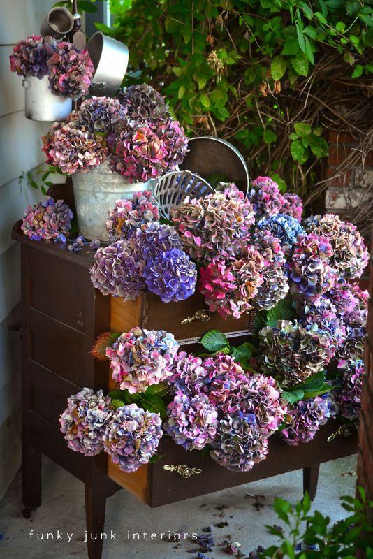 Multi coloured dried hydrangeas in a dresser outdoors via Funky Junk Interiors