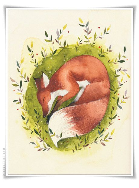 The Sleepy Fox  8x10 Animal watercolor collection by evajuliet