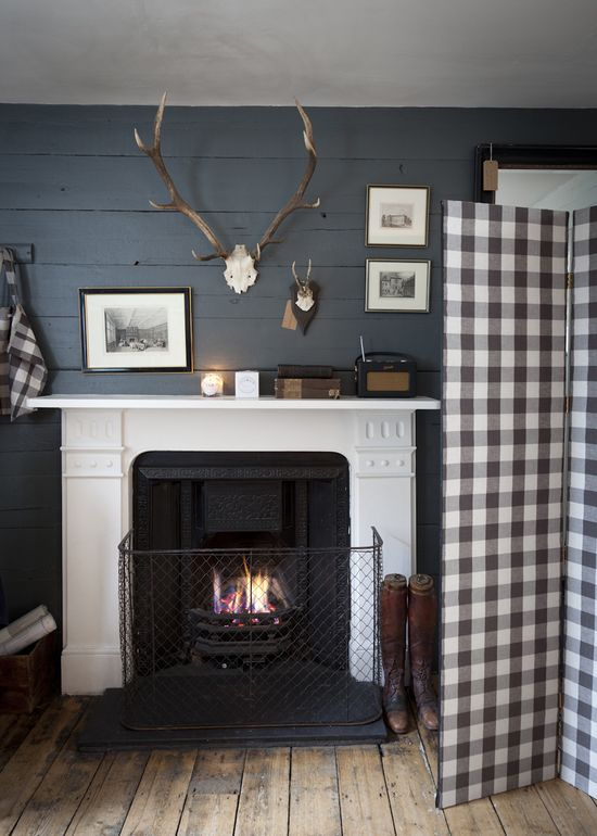 Rustic and cozy.  Grey & white.  Antlers. Grey & white check. Rough, wide plank floors.  Horizontal plank walls.  So much to love!