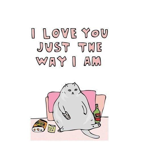 Cat love...
