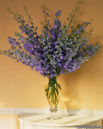 Cut stems of cool-blue delphiniums at various lengths to complement a curvy-shaped vase.