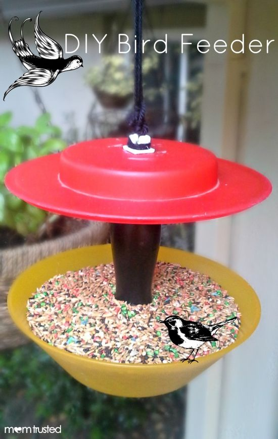 DIY Bird Feeder project to do with kids - How to make a bird feeder from random stuff you can find around the house...Cool!