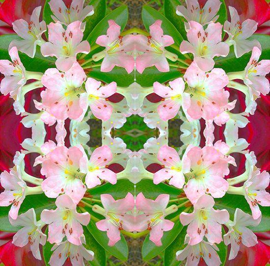 Digital textile desi