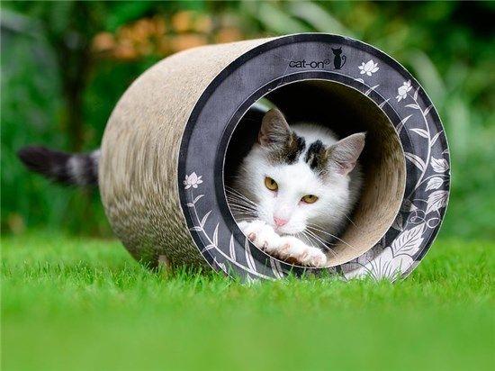 Pet Dream House Cat Scratcher