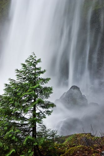 Elowah Falls, Columbia River Gorge National Scenic Area, Oregon