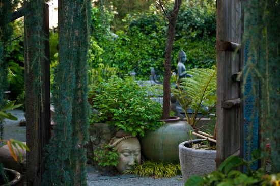 Garden designer Cevan Forristt, A Growing Obsession