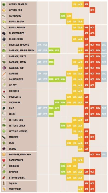 The Ultimate Seasonal Food Calendar [Infographic]