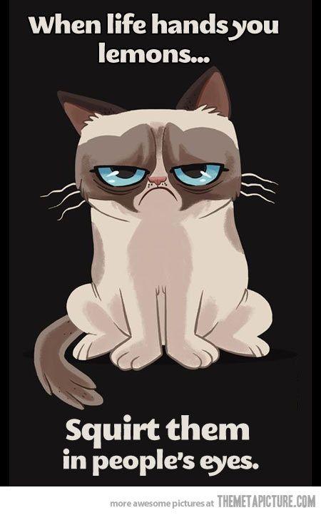 #GrumpyCat #FanArt