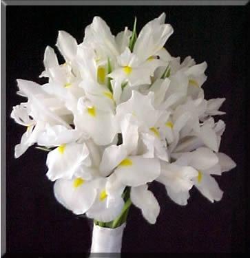 white iris wedding bouquet
